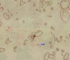 Пещера Низин - план на местности