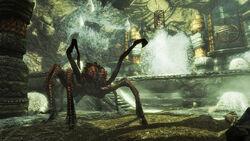 Giant frostbite spider nimhe