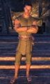 Courier (Online).png
