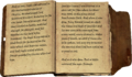 Daynas Valen's Notes Page5-6.png