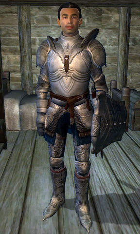 File:Fighters Guild Porter Chorrol.png