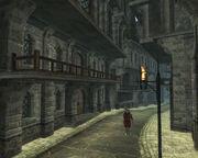 Skingrad city5