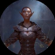 Altmer avatar 1