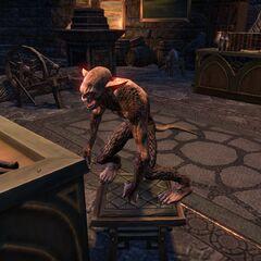Barbas w postaci Pełzacza z gry The Elder Scrolls Online
