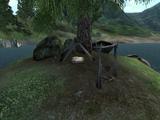 Bawnwatch Camp