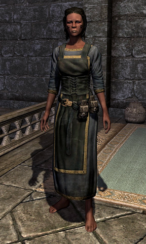 File:Clothes 0006FF45.png