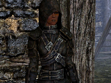 Guild Master's Armor Set