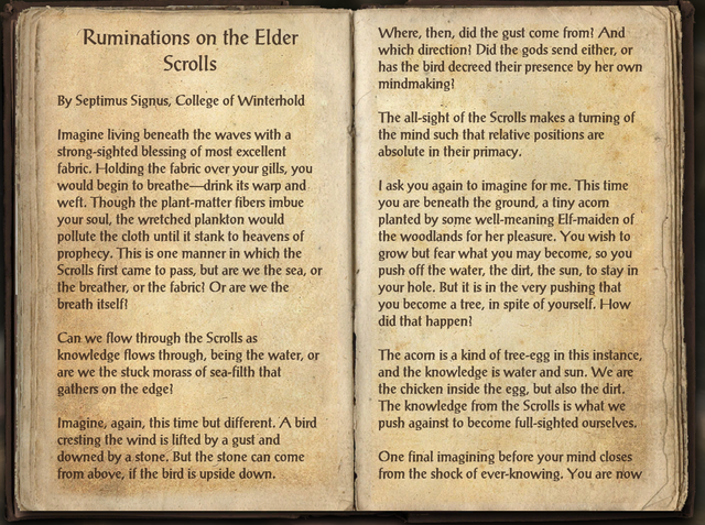 File:Ruminations on the Elder Scrolls.png