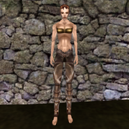 Простые штаны (Morrowind) 11 (жен)