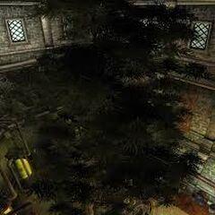Hist z gry The Elder Scrolls IV: Oblivion