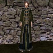 Вычурная Мантия 8 (Morrowind) жен