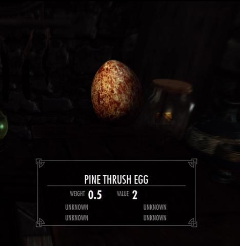 File:Pine Thrush Egg.png