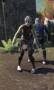 Plagued Peasants