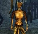 Tsani (Morrowind)
