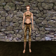Простые штаны (Morrowind) 5 (жен)