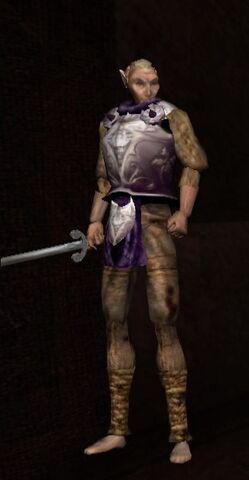File:Duke's Guard Silver Cuirass.jpeg