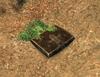 Herbalist's Satchel