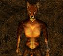 Kaasha (Morrowind)