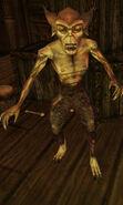 Barbas Creeper