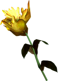Yellow mountain flower