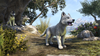Crown Store White River Ice Wolf Pup