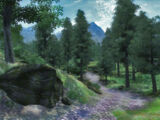 Great Forest (Oblivion)