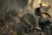 Sword and Shield combat