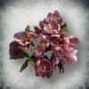 Тимсовые цветы (Tribunal)