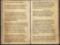 Agganor's Journal.png