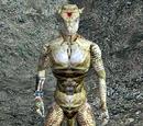 Neesha (Morrowind)