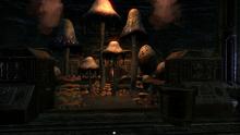 Грибная мастерская и сады