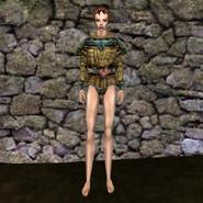 Дорогая рубашка (Morrowind) 4 жен