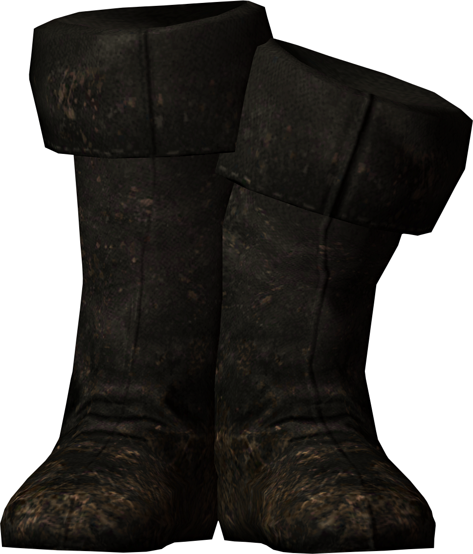 Fine Boots   Elder Scrolls   FANDOM powered by Wikia