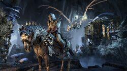 Коллекционный набор дополнения «Кости драконов»