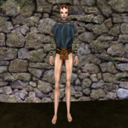 Простая рубашка (Morrowind) 12 (жен)