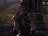 Centurion Gavo
