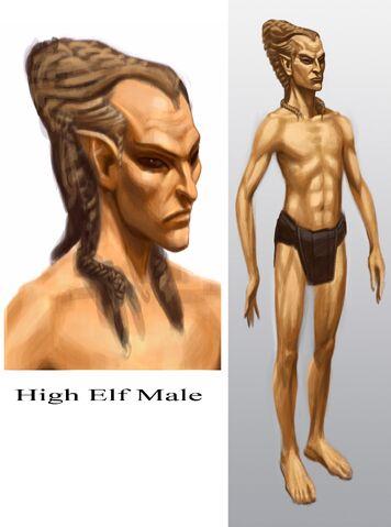 File:High Elf Male.jpg