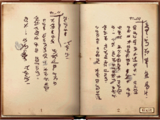 Messenger's Diary
