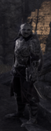 Orsinium New Armor Set
