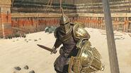 The Elder Scrolls Blades Promotional Arena