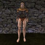 Простая рубашка (Morrowind) 24 (муж)
