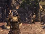 The Swordmaster Division
