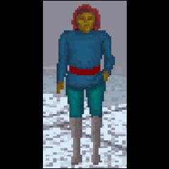 Altmer w TES: Arena podczas zimy