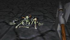 Dead Skeleton