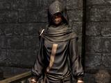 Apparel (Skyrim)