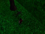 Redguard - The Goblin Caves - Bone Key Goblin Body