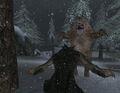 Werewolf Player Fighting Bear.jpg