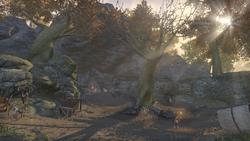 Пещера Надломленное Дерево