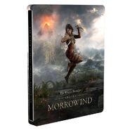 ESO Morrowind Pre-Order Steelbook Case
