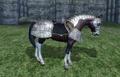 HorseArmorSteel.png